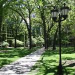 El Jardín de las Delicias en Chicago