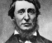 Los diarios de Henry D. Thoreau