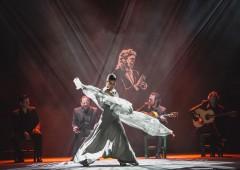 Neurobiología del flamenco