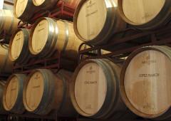 La cultura del vino, el vino de la cultura…