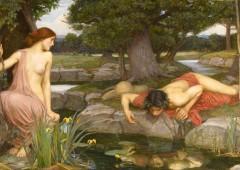 Narciso en lucha